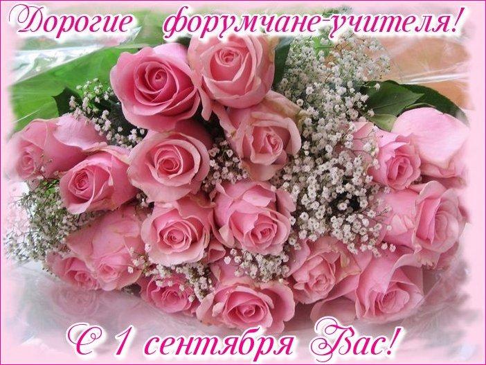 http://sd.uploads.ru/0Bfm3.jpg