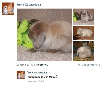 http://sd.uploads.ru/159TH.jpg