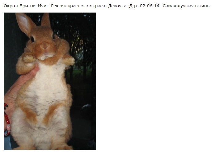 http://sd.uploads.ru/2mpIs.jpg