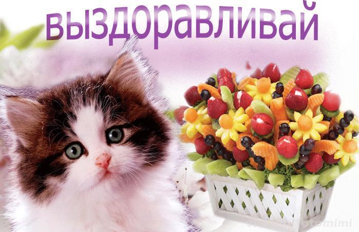 http://sd.uploads.ru/3gIno.jpg