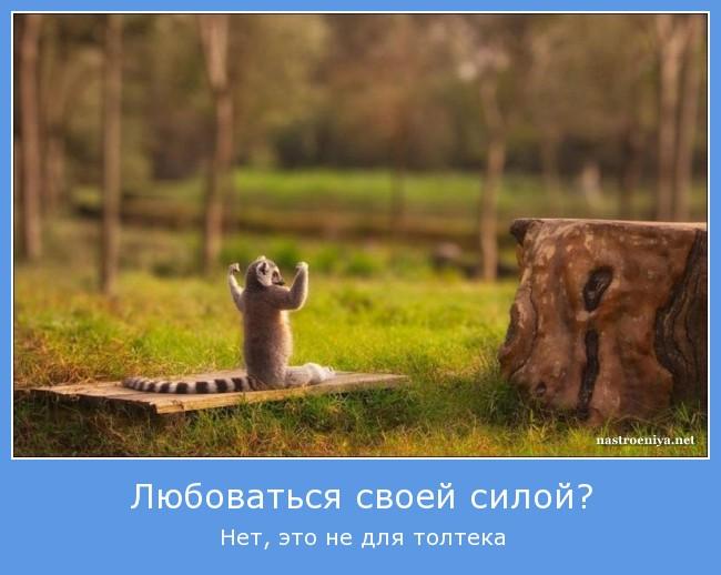 http://sd.uploads.ru/42qAn.jpg