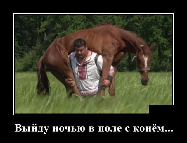 http://sd.uploads.ru/45GJx.jpg