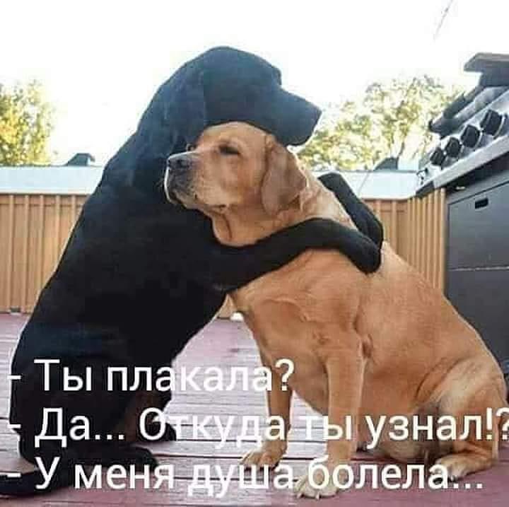 http://sd.uploads.ru/7yjpo.jpg