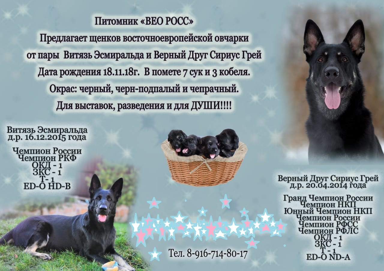 http://sd.uploads.ru/BESgv.jpg