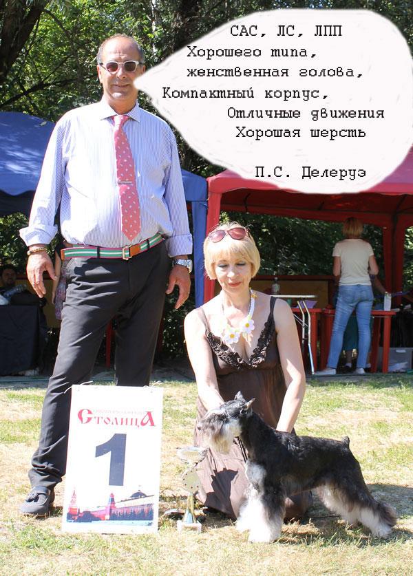 http://sd.uploads.ru/CYmNK.jpg