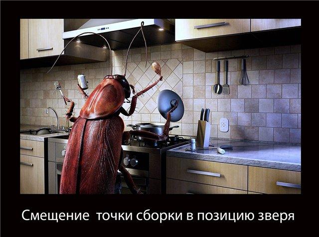 http://sd.uploads.ru/DhPqv.jpg