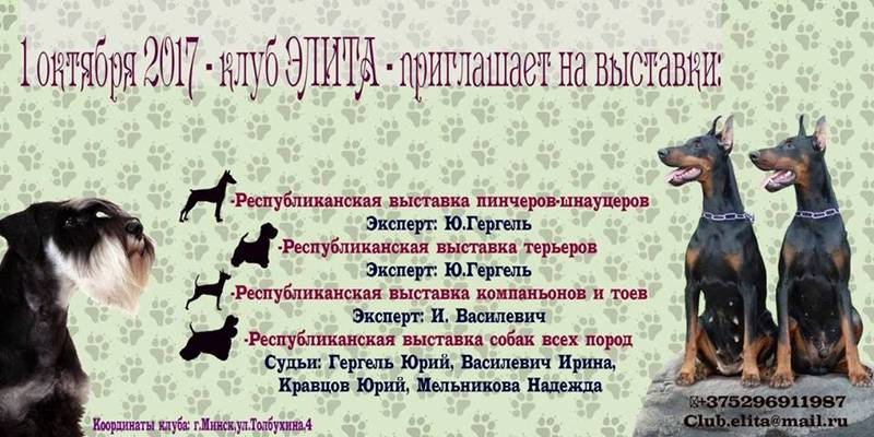 http://sd.uploads.ru/FMTnK.jpg