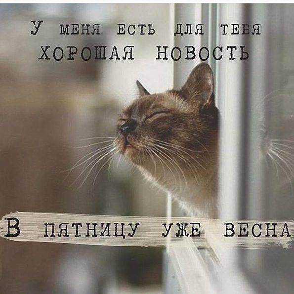 http://sd.uploads.ru/GJkOY.jpg
