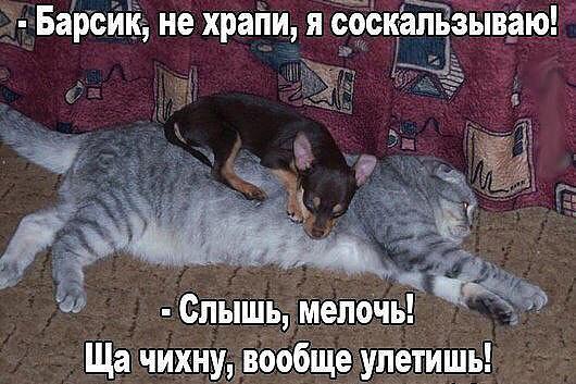 http://sd.uploads.ru/JFYnk.jpg