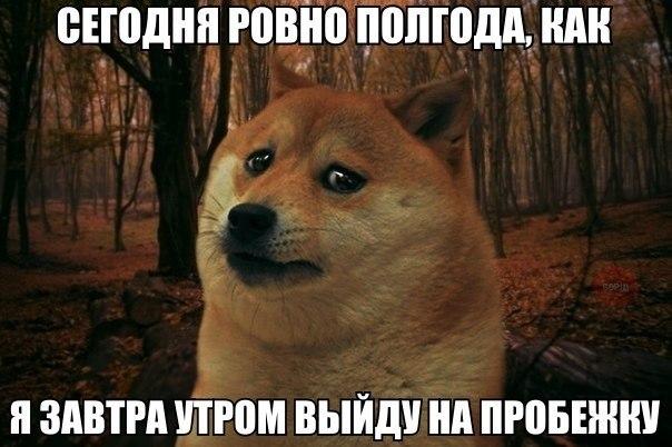 http://sd.uploads.ru/JejN5.jpg