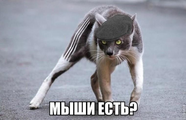 http://sd.uploads.ru/Jq0Nk.jpg