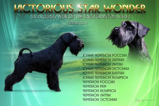 http://sd.uploads.ru/JsiIP.jpg