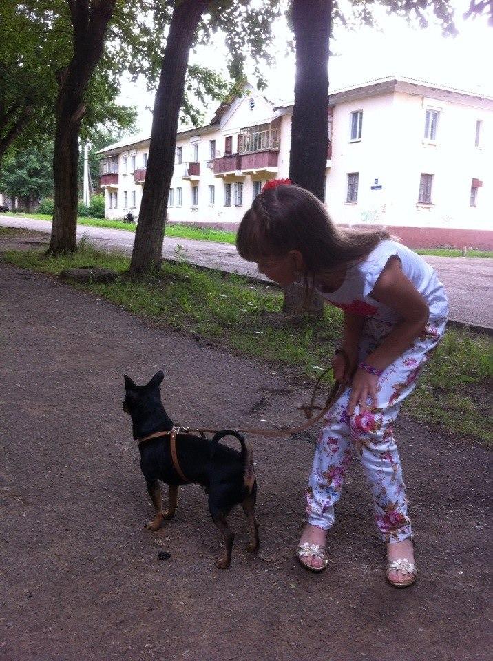 http://sd.uploads.ru/KG9Iq.jpg