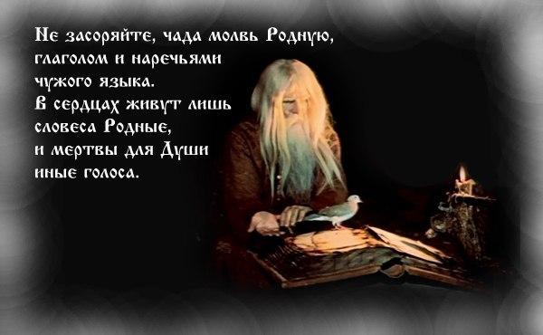 http://sd.uploads.ru/KoULB.jpg