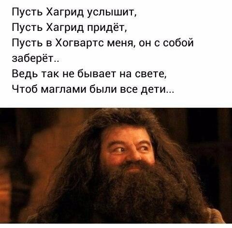 http://sd.uploads.ru/KrFMk.jpg