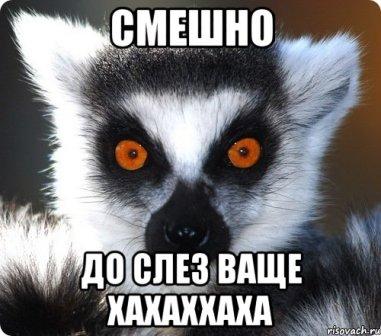 http://sd.uploads.ru/KuWAR.jpg
