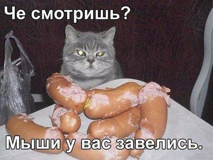 http://sd.uploads.ru/KymgJ.jpg