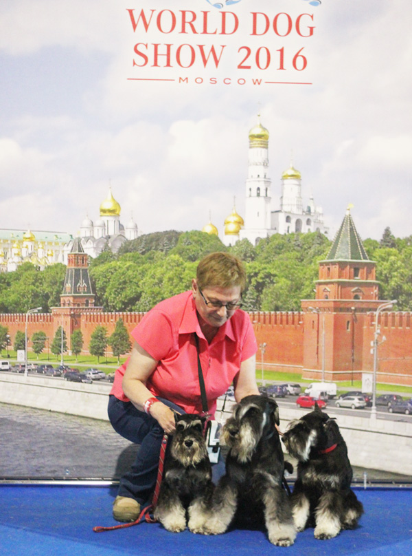 http://sd.uploads.ru/LNX7S.jpg