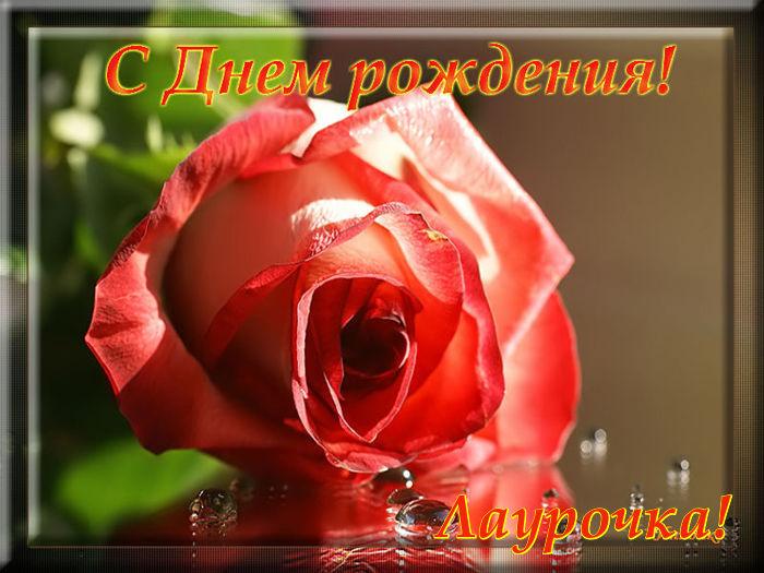 http://sd.uploads.ru/NlUwu.jpg