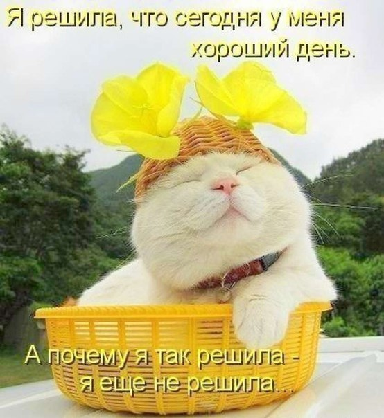 http://sd.uploads.ru/PjtO9.jpg