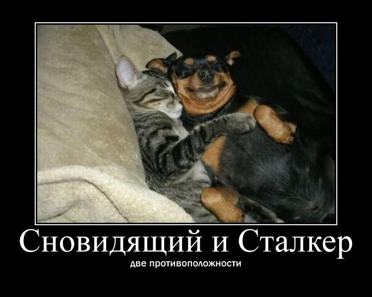 http://sd.uploads.ru/PwGXA.jpg