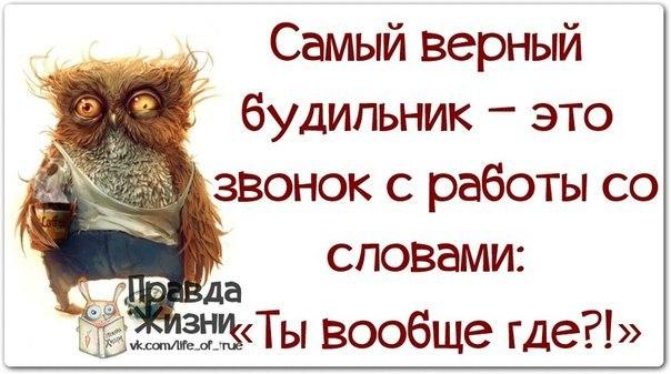 http://sd.uploads.ru/Q7GZp.jpg