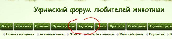 http://sd.uploads.ru/QKt9L.jpg