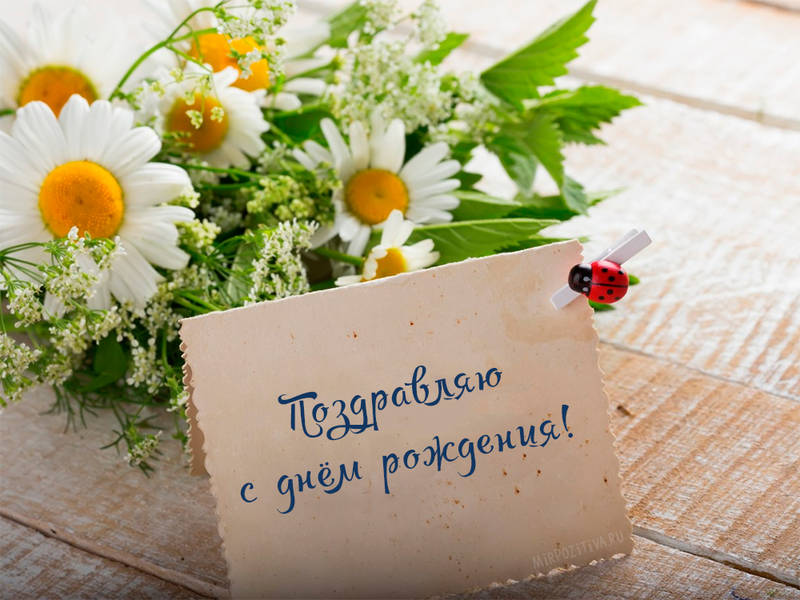 http://sd.uploads.ru/QNdGp.jpg