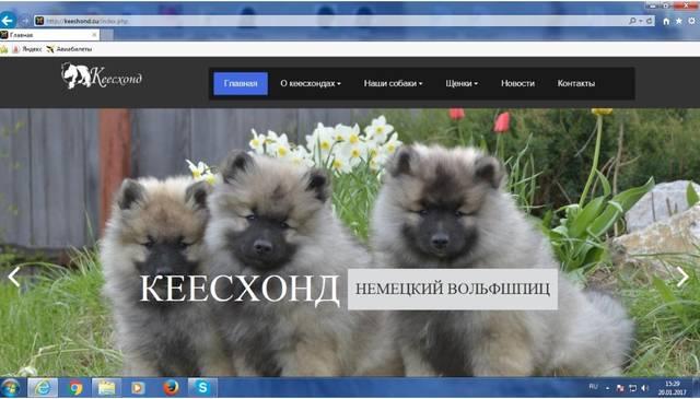 http://sd.uploads.ru/SG3Ie.jpg