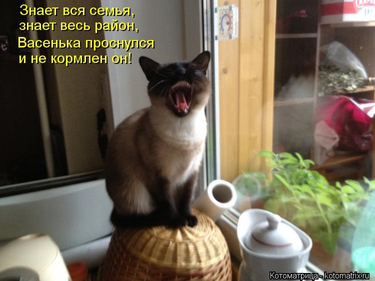 http://sd.uploads.ru/TXvMK.jpg