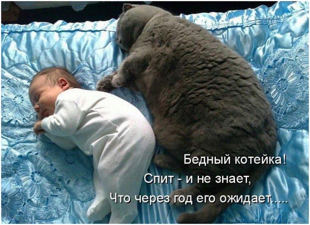 http://sd.uploads.ru/VJv42.jpg