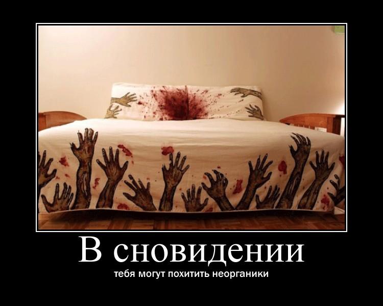 http://sd.uploads.ru/WAwuX.jpg