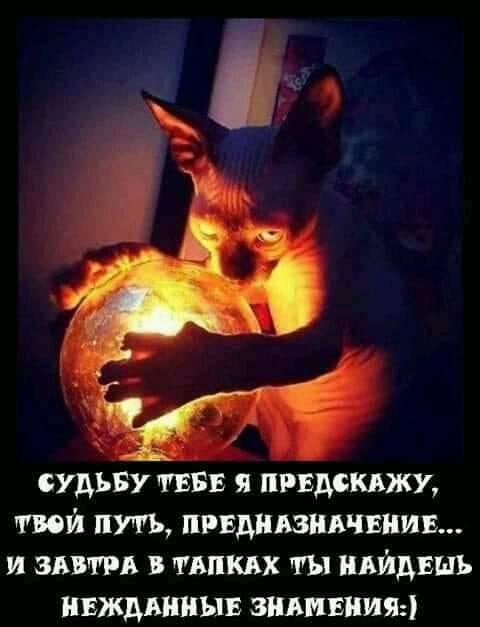 http://sd.uploads.ru/WSGHY.jpg