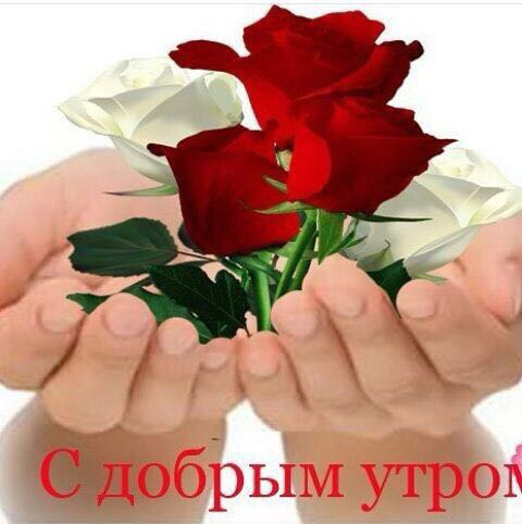 http://sd.uploads.ru/XJFH6.jpg