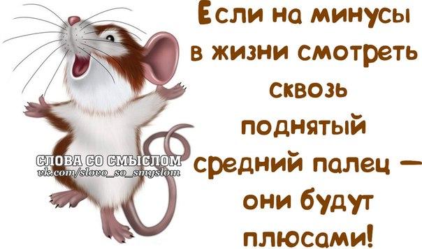 http://sd.uploads.ru/XzxvO.jpg