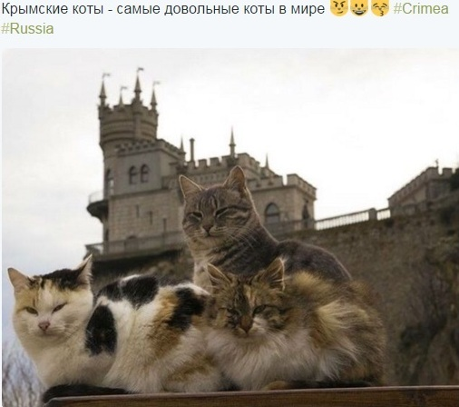 http://sd.uploads.ru/YtXu8.jpg