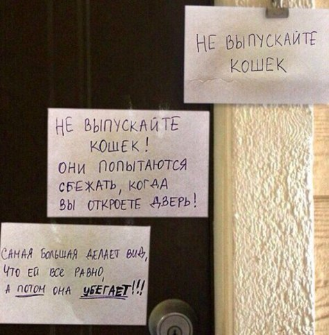http://sd.uploads.ru/aBUmi.jpg