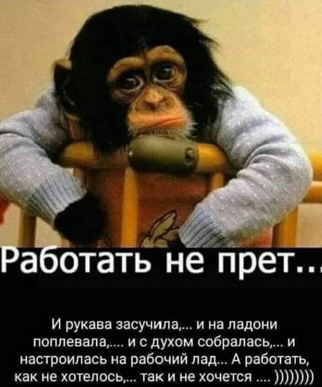 http://sd.uploads.ru/aXfy8.jpg