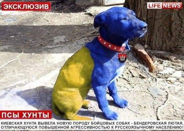 http://sd.uploads.ru/c9CQU.jpg