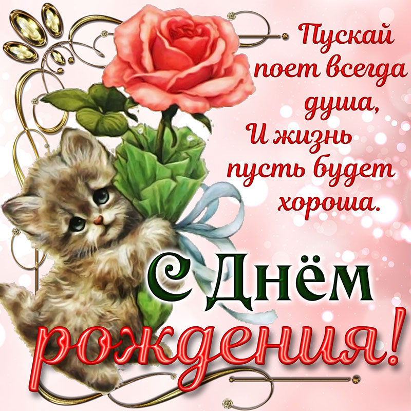 http://sd.uploads.ru/cgaJv.jpg