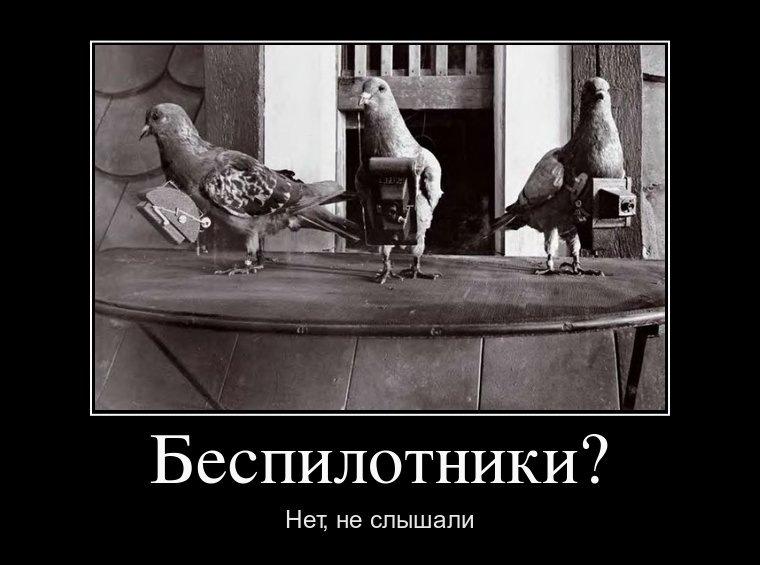 http://sd.uploads.ru/d5mQI.jpg