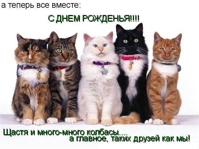 http://sd.uploads.ru/dxZrl.jpg