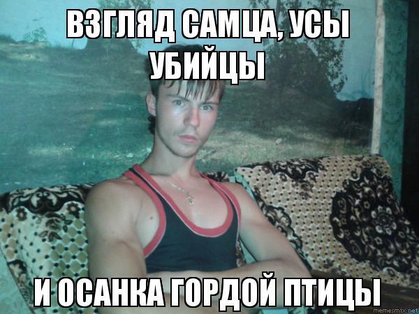 http://sd.uploads.ru/e6FSE.jpg