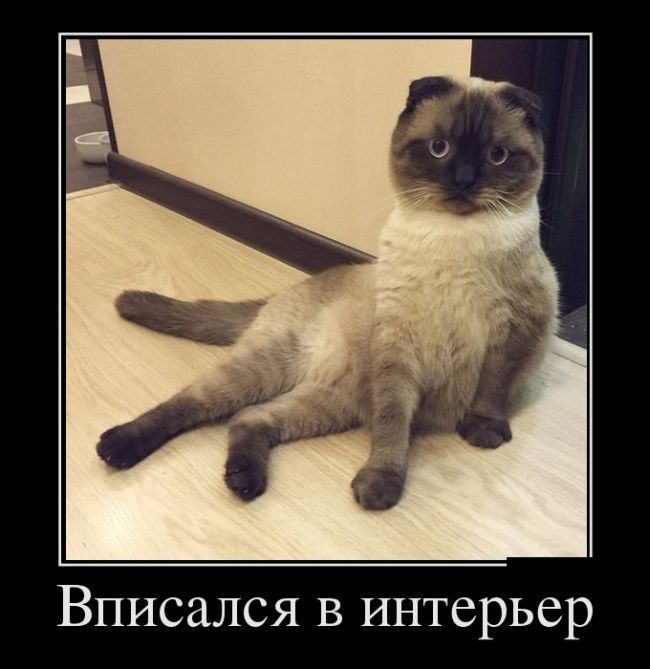 http://sd.uploads.ru/evcnB.jpg