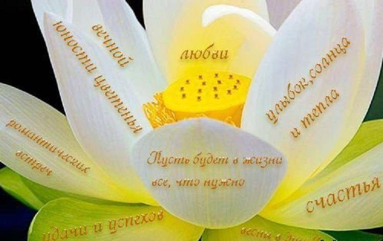 http://sd.uploads.ru/fAl4q.jpg