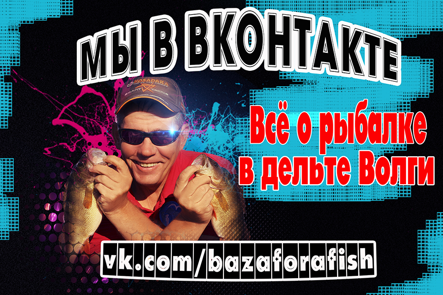 http://sd.uploads.ru/fRIoV.jpg