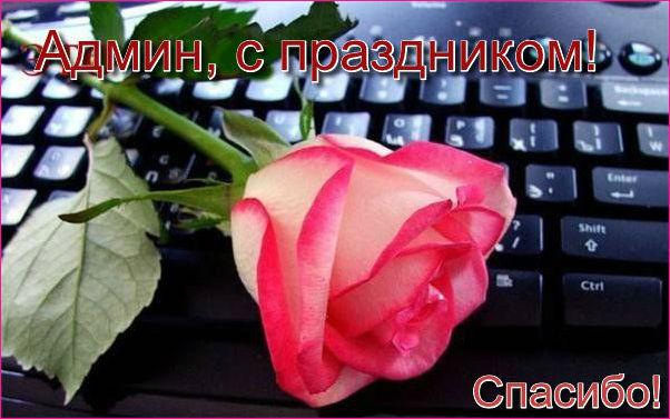 http://sd.uploads.ru/gU17S.jpg
