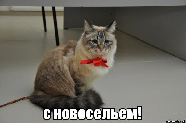 http://sd.uploads.ru/gYsZn.jpg