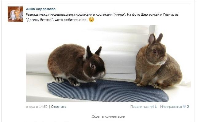 http://sd.uploads.ru/iCnMx.jpg