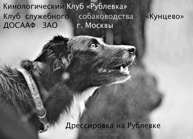 http://sd.uploads.ru/jB4XA.jpg